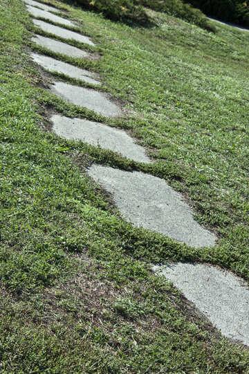 Plates  Sidewalk  at  lawn №5639