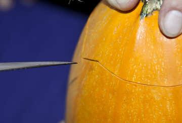 Cut  of the  pumpkin  Lamp №5979