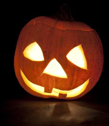 Pumpkin  head №5939