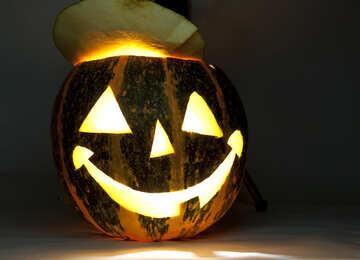 Merry  pumpkin №5968