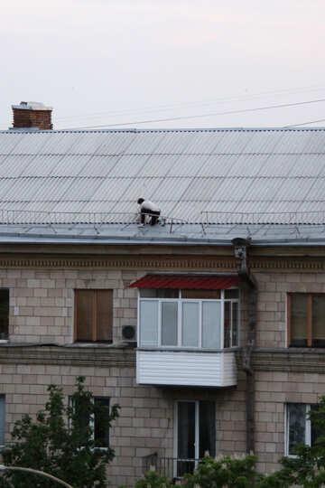 Uomo sul tetto per installare un piatto №5105
