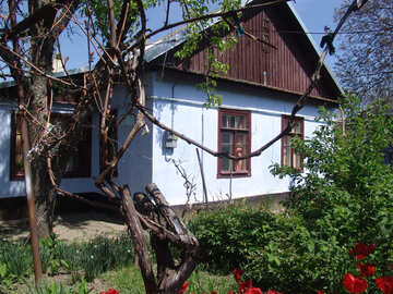 Country house №5373