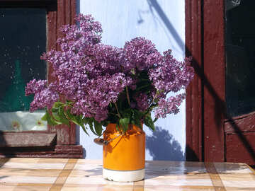 Lilacs in cans №5304