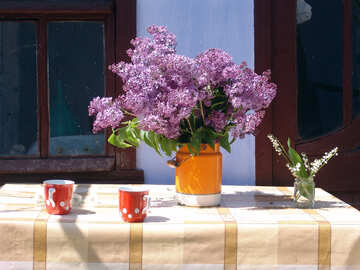 Still life with flowers.Spring in the village. №5307