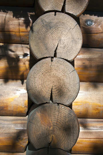 Торец бревен сруба. Текстура. №5650