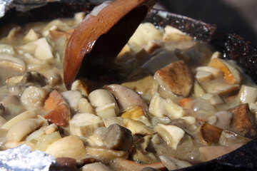 Mushroom stew №5520