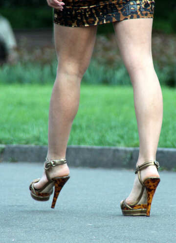 Legs high heels №5111