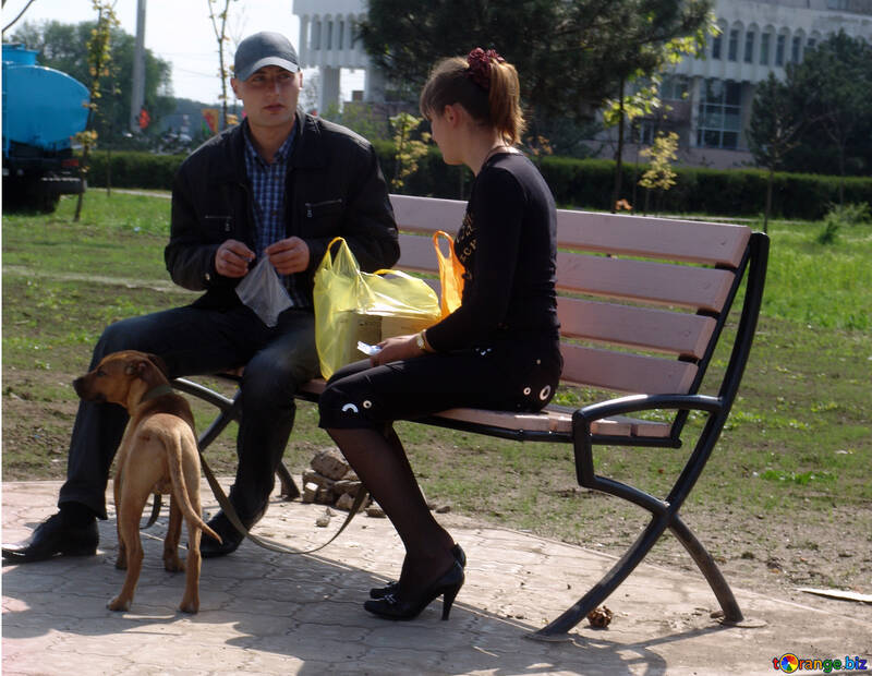 Couple on bench with dog №5377