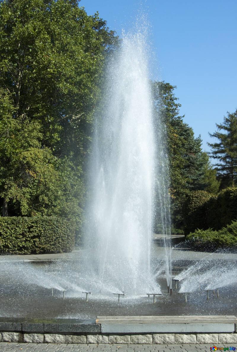Fountain   park. №5637