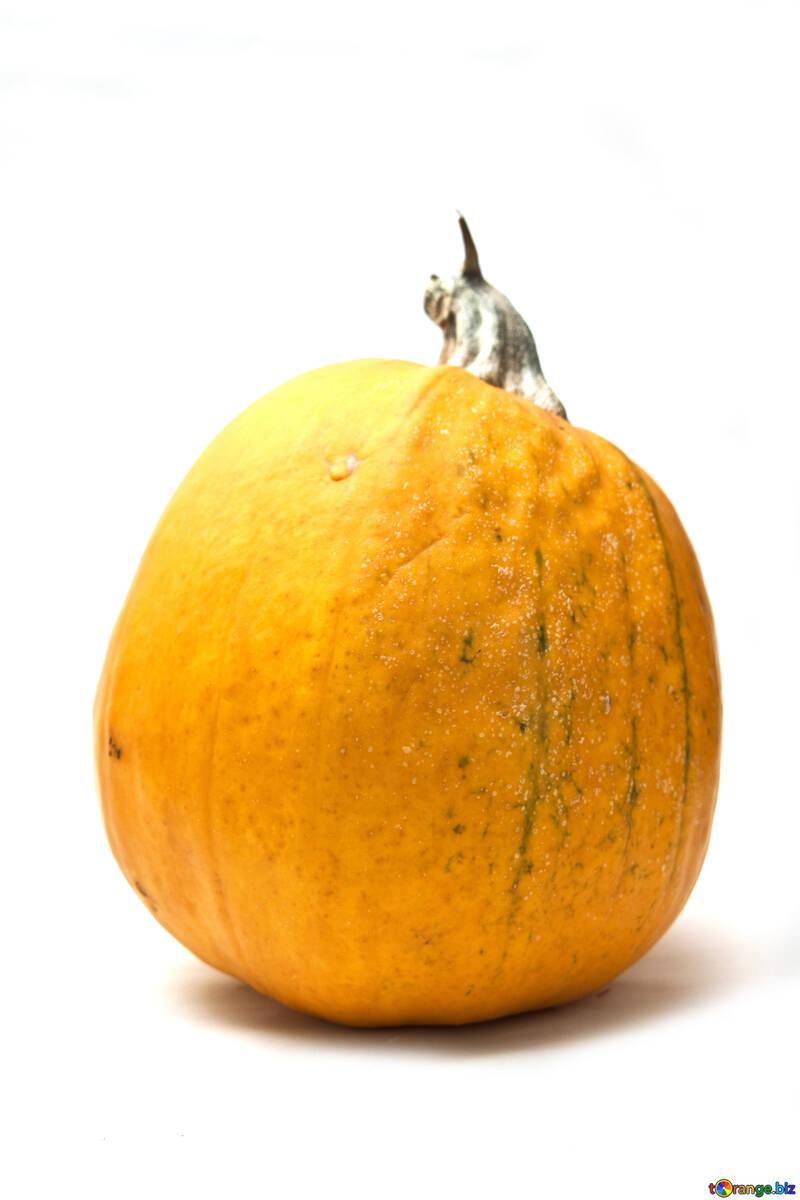 Kitchen pumpkin №5996