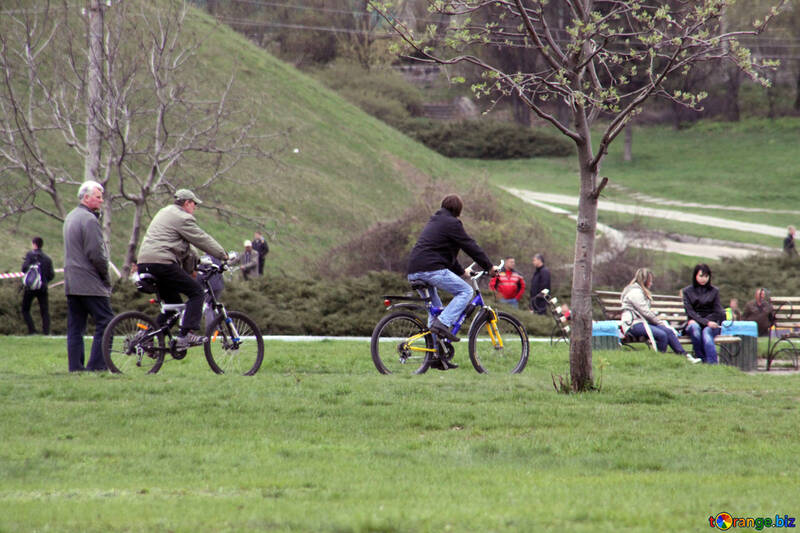Cyclists in the park №5198