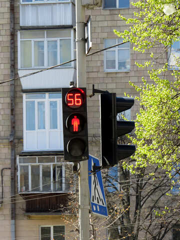 56 stoplight №50329