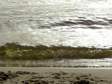 Beach waves and ocean №50683