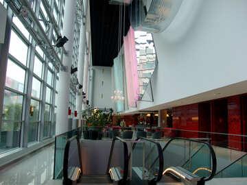 Escalators in the office №50244
