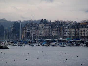 Yachts in the Geneva Lake №50247