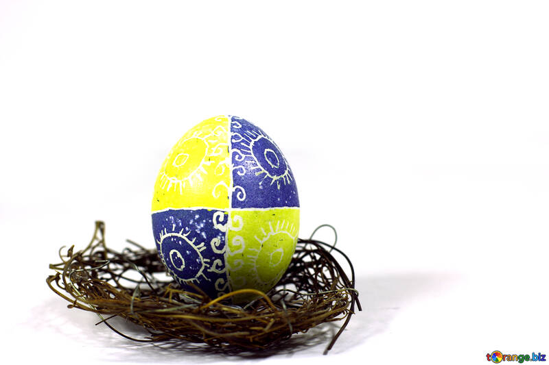 easter egg in a nest №50252
