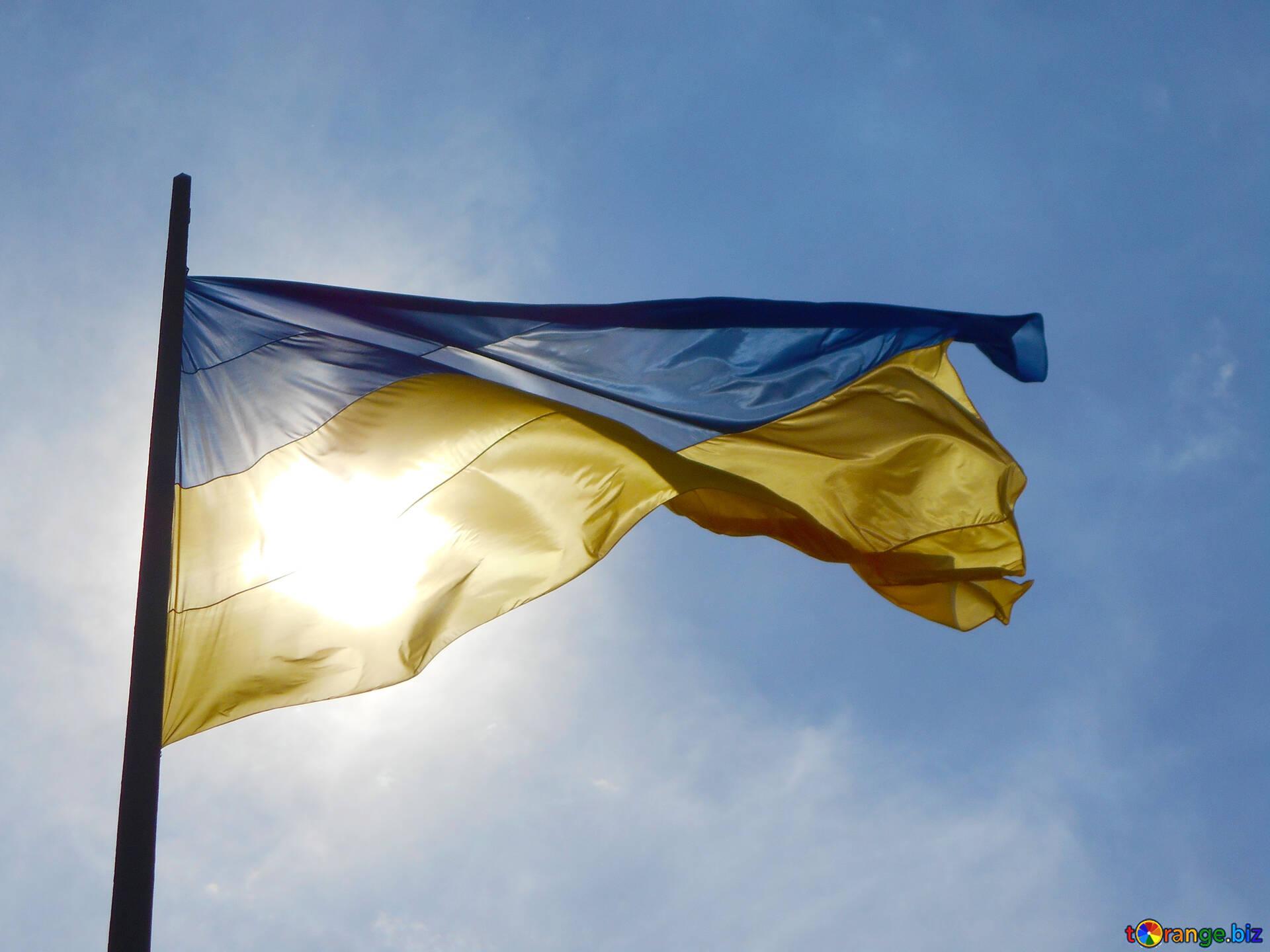 Винница украина фото города белой