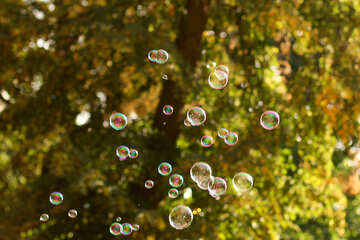 Bubbles drops green background №51125