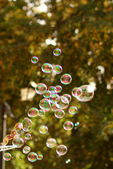 Floating bubbles №51121