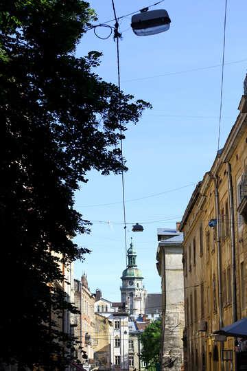 A tree,a castle and buildings .a beautiful neighborhood №51629