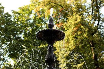 fountain water №51023