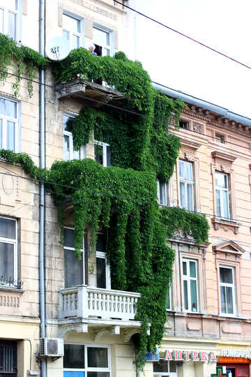A building with balconies and plants hanging down from the top of the building. №51781