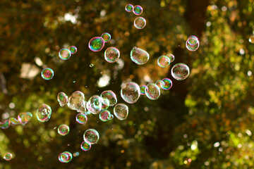 soap bubbles in front of green №51123
