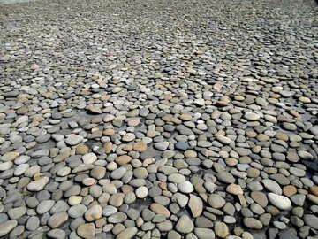 stones pebbles №51301