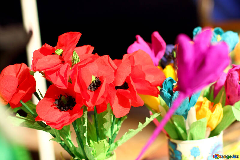 poppies flowers №51078