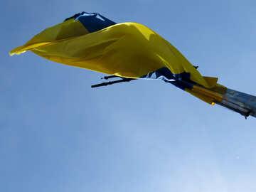 Gelbe und blaue Dingfahne №52085