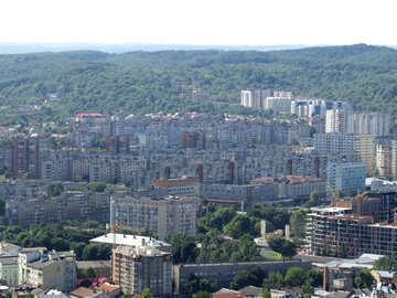 Municipio verde №52108