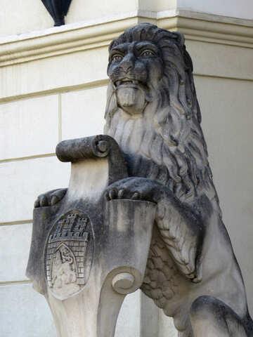 Lion №52340