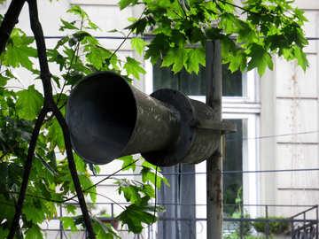 Trees horn speaker house window №52285