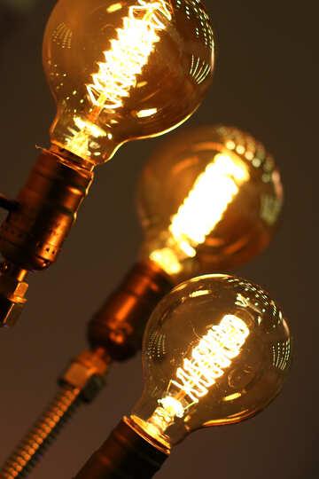 bulbs light №53149