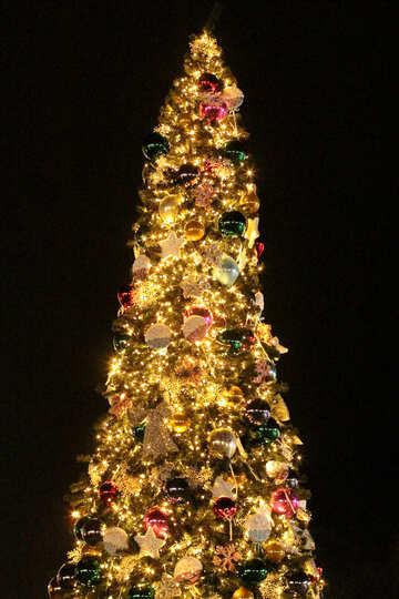 Christmas tree on black background №53613