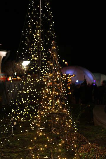 A Christmas tree lights on  tree №53611