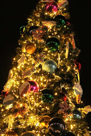 A christmas tree lit up at night christmas decoration tradition holiday evergreen №53618