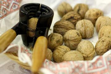 Walnuts, one in nut cracker Nutcracker №53111
