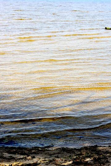 water seen in ocean sea beach №53324