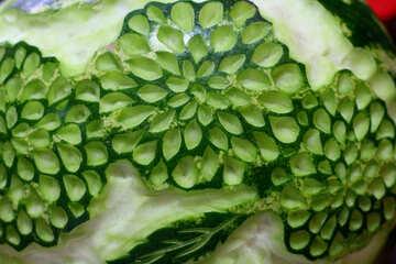Intaglio di arte vegetale №53344