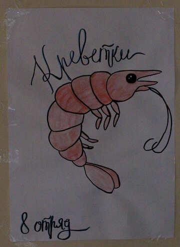 shrimp backround lobster №54149