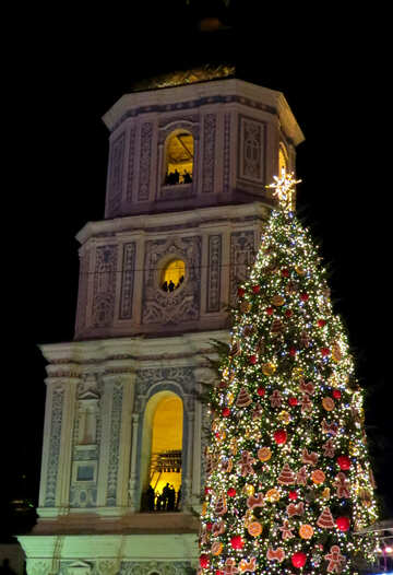 A tall building with a christmas tree №54086