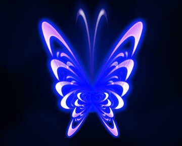 Neon butterfly glow №54916