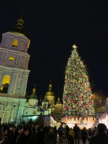 Christmas tree and building and people №54077