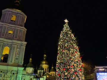 Kyiv city  xmas Tree Christmas picture №54080