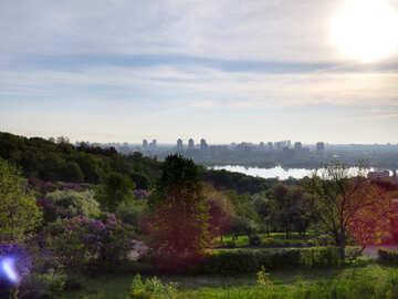 Панорама пейзаж голубое небо солнце и дерево природа №54171