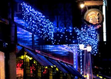 Some blue lights looks like a restaurant  christmas №54039