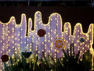 a wall with lights lemon grass flowers №54104