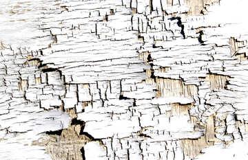 Flaky paint or  Cracks wood paint №54175