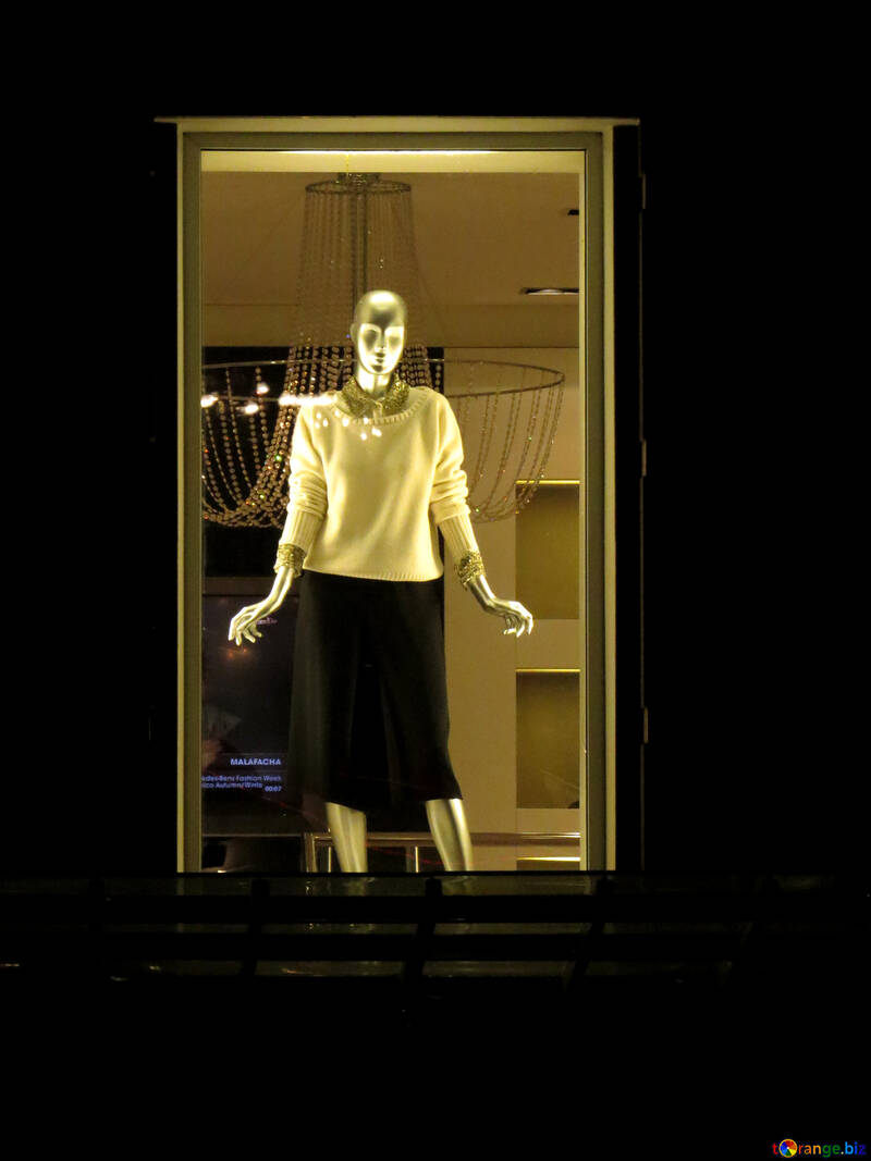 woman in black skirt person mannequin shop №54054